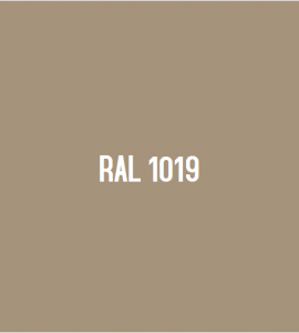 RAL 1019