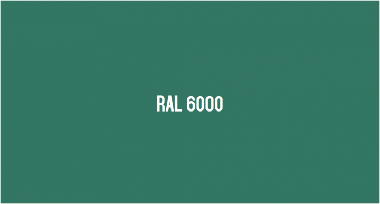 RAL 6000