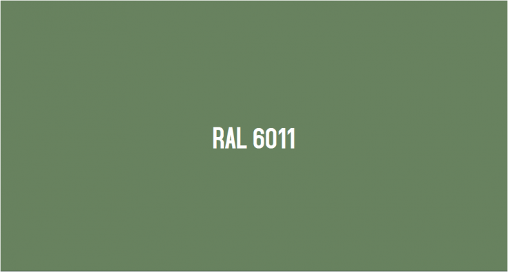 RAL 6011