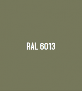 RAL 6013