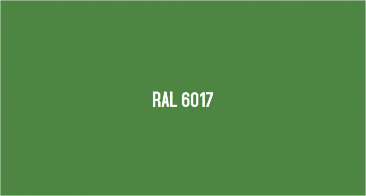 RAL 6017