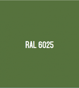 RAL 6025