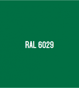 RAL 6029